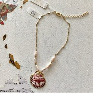 Francesca's | Freshwater Pearl Seashell Necklace